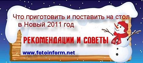 Что приготовить и поставить на стол на Новый 2011 год