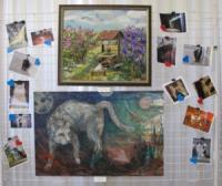 До Всесвітнього дня котів у Кропивницькому відкрили експозицію