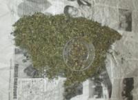 У раніше судимого мешканця Кіровоградщини поліцейські вилучили марихуану