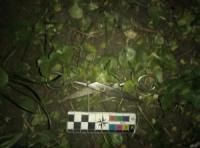 У Кропивницькому затримали чоловіка,  який вчинив замах на вбивство