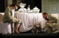 Кропивничан запрошують на виставу «Собаче серце»