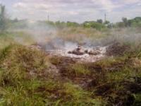 На Кіровоградщині рятувальники ліквідували пожежу сухої трави