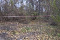 У Кропивницькому згвалтували 21-річну дівчину