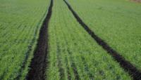 Черниговщина готовится к посевной с аграрными расписками
