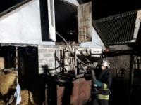Кіровоградська область: вогнеборці ліквідували два загорання на території приватних домоволодінь