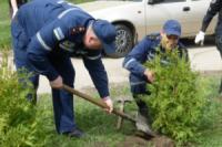 У Кропивницькому рятувальники долучились до акції з висадки дерев