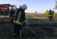 На Кіровоградщині рятувальники 4 рази виїздили на гасіння пожеж в екосистемах