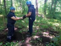 Кіровоградська область: саперами знищено 46 боєприпасів