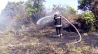 На Кіровоградщині рятувальники ліквідували 5 пожеж у екосистемі