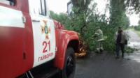 На Кіровоградщині бійці ДСНС 6 разів надавали допомогу по прибиранню повалених дерев