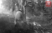 На Кіровоградщині бійці ДСНС 5 разів долали пожежі сміття та сухої рослинності