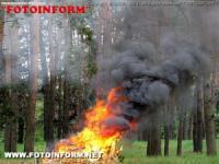 На Кіровоградщині бійці ДСНС ліквідували 3 пожежі в екосистемах
