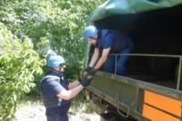 На Кіровоградщині саперами знищено 42 боєприпаси