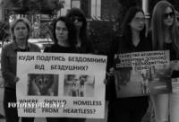 В Кропивницком объявили вознаграждение за поимку убийц животных