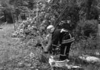 На Кіровоградщині рятувальники 5 разів розпилювали й прибирали дерева та гілля