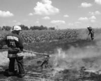 На Кіровоградщині загасили три пожежі рослинності на відкритих територіях