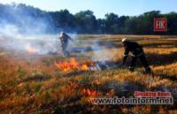 Минулої доби на Кіровоградщині приборкано 8 пожеж на відкритих територіях