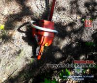 На Кіровоградщині чоловік проводив незаконну порубку дерев