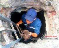 Устинівка: рятувальники витягли з пожежної водойми цуценя
