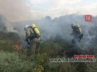 На Кіровоградщині вогнеборці ліквідували 7 загорянь в екосистемі