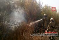 Вогнеборці Кіровоградщини ліквідували 12 загорянь сухої рослинності