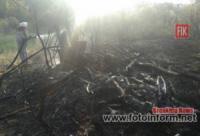 Протягом доби вогнеборці Кіровоградщини приборкали 17 загорянь