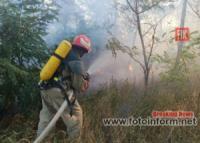 Рятувальники Кіровоградщини ліквідували 30 загорянь на відкритих територіях