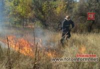 На Кіровоградщині ліквідовано 2 пожежі на відкритих територіях