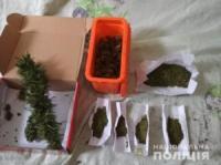 На Кіровоградщині поліцейські затримали двох наркозбувачів