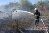 На Кіровоградщині загасили 4 загоряння на відкритих територіях