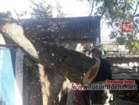 На Кіровоградщині двічі надавали допомогу по розпилюванню аварійних дерев