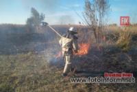 На Кіровоградщини ліквідували 6 пожеж сміття,  сухої трави та очерету