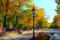 У Кропивницькому осінь: кращі знімки осіннього міста