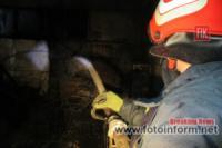 На Кіровоградщині рятувальники ліквідували 3 пожежі різного характеру
