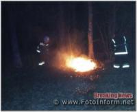 Кіровоградщина: на відкритих територіях загасили 4 пожежі