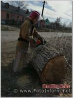 За добу на Кіровоградщині бійці ДСНС прибрали два аварійних дерева