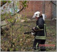 На Кіровоградщині тричі надавали допомогу по розпилюванню та прибиранню аварійних дерев