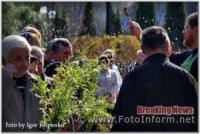 Вербна неділя у Кропивницькому
