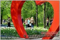 У Кропивницькому малювали цвітіння перших весняних квітів