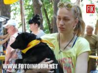У Кропивницькому розпочалась виставка-конкурс безпородних собак