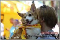 Кропивницький: «Кубок Барбоса-2019» у фотографіях
