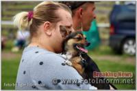 Кропивницький: виставка собак у фотографіях