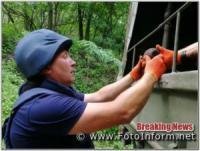 На Кіровоградщині під час земляних робіт знайшли міну