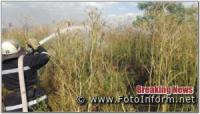 Минулої доби на Кіровоградщині виникло 8 займань на відкритих територіях