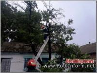 На Кіровоградщині рятувальникам довелося двічі розпилювали та прибирали аварійні дерева