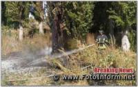 На відкритих територіях Кіровоградщини виникло 19 пожеж