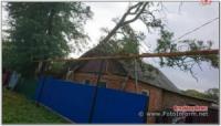 На Кіровоградщині дерево впало на житловий будинок