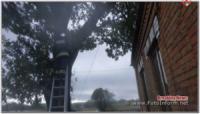 На Кіровоградщині знову розпилювали та прибирали аварійні дерева