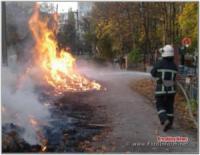 Кіровоградщина: на відкритій території виникло 4 пожежі