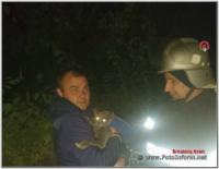 На Кіровоградщині рятувальники двічі визволяли котів із небезпечних ситуацій